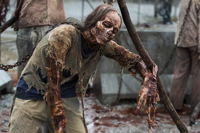Walking Dead Kausi 11