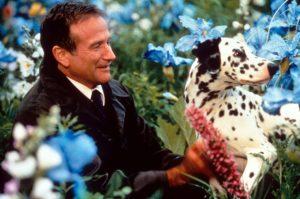 Vielä hetken Netflixissä: Hienosta draamasta voi halutessaan nähdä yhtymän Robin Williamsin kuolemaan